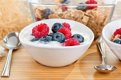 Yoghurt med bär Arkivfoton