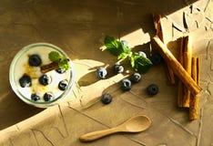 Yoghurt med blåbär, kanel och mintkaramellen royaltyfria foton