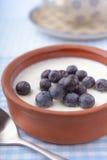 Yoghurt med blåbäret Arkivfoton