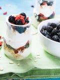 Yoghurt med gojibär Fotografering för Bildbyråer