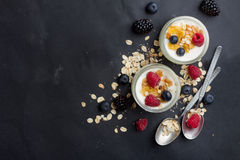 Yoghurt med granola eller mysli royaltyfri foto