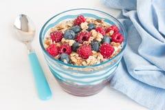 Yoghurt med granola och bär arkivfoto