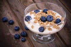 Yoghurt med granola och blåbär royaltyfria foton