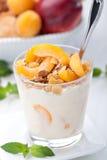 Yoghurt med mysli royaltyfria foton