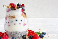 Yoghurt med mysli, granola, bär och chiafrö i ett exponeringsglas royaltyfria bilder