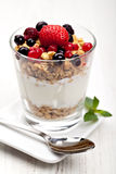 Yoghurt med mysli och bär Fotografering för Bildbyråer