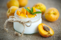 Yoghurt med nya aprikors Arkivfoto