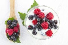 Yoghurt med skogbär i en bunke Arkivfoton