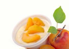 Yoghurt met abrikoos en stukken Stock Foto