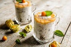 Yoghurt met chia, kokosnoot, honing en physalispuree royalty-vrije stock foto's