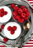 Yoghurt met chiazaden en verse frambozen stock afbeeldingen