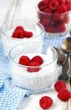 Yoghurt met chiazaden en verse frambozen royalty-vrije stock afbeeldingen