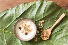 Yoghurt met graangewas in een kop wordt bestrooid die Royalty-vrije Stock Afbeelding