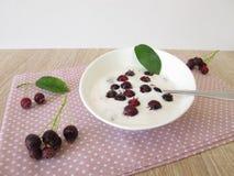 Yoghurt met juneberries Stock Foto's