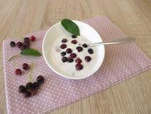 Yoghurt met juneberries Stock Fotografie