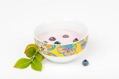 Yoghurt met vers geplukte bosbessen Royalty-vrije Stock Foto's