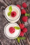 Yoghurt och hallon royaltyfri foto