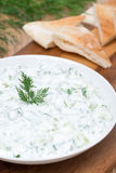Yoghurt sauce tzatziki with herbs, cucumber and garlic on plate Royalty Free Stock Photography