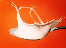 Yoghurt splash in the spoon Royalty Free Stock Photography