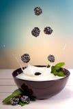 Yoghurtbraambes Royalty-vrije Stock Afbeeldingen