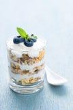 Yoghurtdessert met Graangewassen royalty-vrije stock fotografie