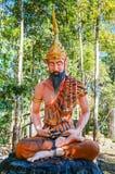 Yogi йоги размышляя с полной кожей бороды и тигра Стоковые Изображения