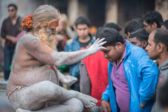 Yogi молит Стоковое Изображение