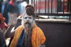 Yogi Photo stock