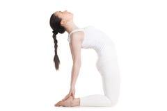 Yogi female doing ustrasana Pose Stock Photo