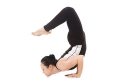 Yogi female in yoga Scorpion Pose Vrischikasana Royalty Free Stock Images