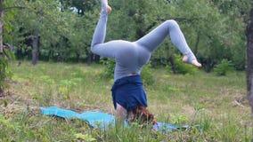 Yogi femminili che equilibrano condizione sulle armi anteriori, asana avanzato, yoga con esperienza stock footage