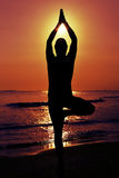 Yogi man doing the yoga tree pose Royalty Free Stock Photos