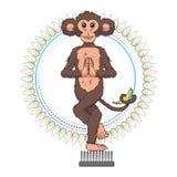 Yogi monkey Stock Image