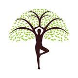 Yogi tree. Logo  design on a white background Stock Image