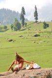 Yogin en el Himalays Fotografía de archivo