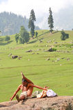 Yogin in the Himalays Stock Photography