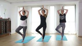 Yogis doing vrikshasana at a gym in yoga class stock video