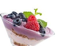 yogur Imagen de archivo libre de regalías