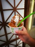 Yogur con caramelo Fotografía de archivo libre de regalías