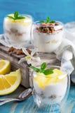 Yogur con el granola y el pomelo Fotos de archivo libres de regalías