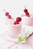 Yogur con la frambuesa imagen de archivo libre de regalías