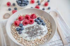 Yogur con la fruta fresca Foto de archivo libre de regalías