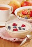Yogur con las bayas frescas Imagen de archivo libre de regalías