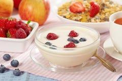 Yogur con las bayas frescas Foto de archivo libre de regalías