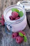 Yogur con las frambuesas fotos de archivo libres de regalías