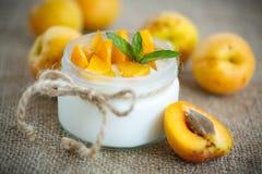 Yogur con los albaricoques frescos Foto de archivo