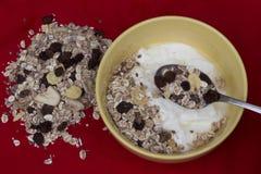 Yogur con muesli fotografía de archivo libre de regalías