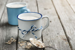 Yogur de Muesli con la harina de avena Imagen de archivo libre de regalías