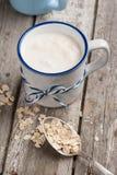 Yogur de Muesli con la harina de avena Foto de archivo libre de regalías