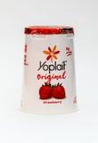 Yogur de Yoplait Fotografía de archivo